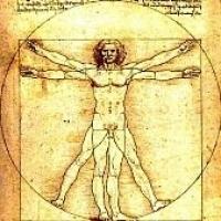 Modulor figura- Leonardo rakta le az alapokat